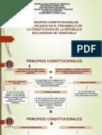 Mapa Conceptual Principios Constitucionales