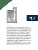Manual do Companheiro Parte-25.pdf