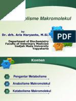 7 Aris-Metabolisme (Introduction)