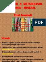 7 Vitamin Dan Mineral