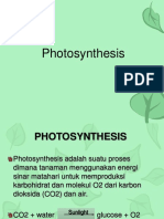 7 Photosynthesis