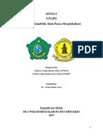 Referat GNAPS.docx