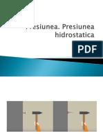 Presiunea - Presiunea Hidrostatica
