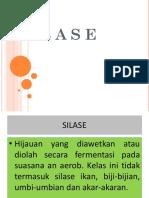 (5) SILASE.pptx