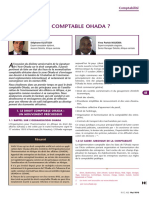 Avenir Du Droit Comptable OHADA