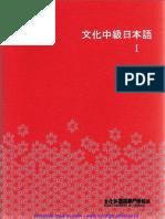Bunka_chukyu.pdf