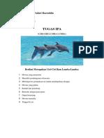 ciri-ciri hiu