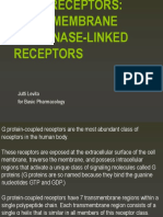 Transmembrane and Kinase Receptors