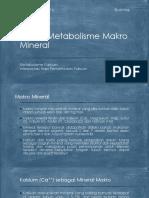 Proses Metabolisme Makro Mineral