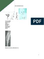 Curs Ortopedie