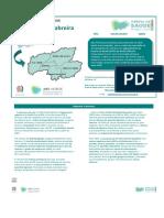 PDF PLS09 02 GeresCabreira