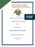 P10 FISIOLOGIA