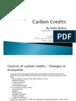 Presentation on Carbon Credits - Nidhi Bothra