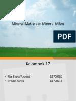 Mineral Makro Dan Mineral Mikro Ppt