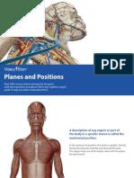 anatomical+planes+directons.pdf