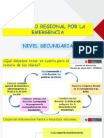 Currículo Regional Por La Emergencia