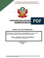 Perfil Cuy Huayucachi Mayo 2009
