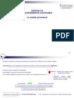capitulo-ii-procedimientos-cautelares-1206861594900594-2.ppt