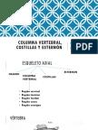 Anatomía (Columna, Costillas y Esternón) (1)