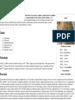Jerivá – Wikipédia, A Enciclopédia Livre