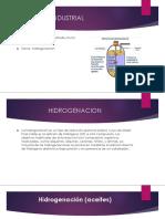 Procesos Industrial Hidrogenacion