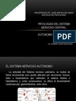 patologiasdelsistemaneevioso-170523214731