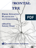 Prefrontal Cortex, From Synaptic Plasticity to Cognition