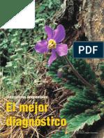 INDICADORES AMBIENTALES.pdf