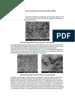 Tipo de fracturas mecánicas en los materiales.pdf