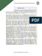 110257199-Instrumentacion-Geotecnica-Final.pdf