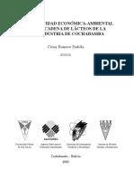 pdf_560