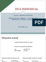 Práctica Individual DCG Mercados de Carbono