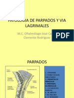 02 Patologia de parpados y Vias lacrimales. USMP.pdf