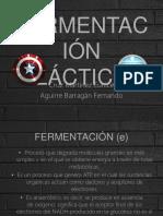 FERMENTACIÓN LÁCTICA