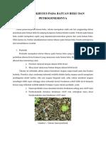 Tekstur Khusus Pada Batuan Beku Dan Petrogenesisnya (PETROGRAFI)