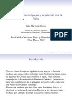 SeminarioDrAldo.pdf