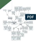 BIOETICA-ACTO MEDICO MAPA.docx