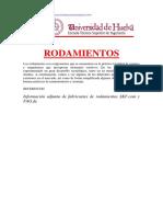 Master Ingenieria Rodamientos y Montaje.pdf