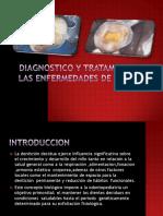 Diagnóstico y Tratamiento de Las Enfermedades de La Pulpa Temporal
