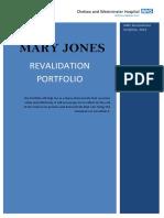 Nursing Revalidation Portfolio Example 2