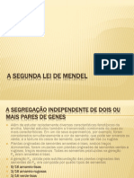 2° Lei De Mendel