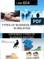 1.31015type of Biz Entities