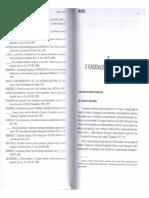 306811002-O-Funcionalismo-Em-Linguistica-Pezatti-2004.pdf