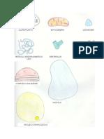 anexo1_22.pdf