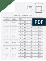 PERFIL PTR.pdf