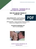 Plan Red Trujillo Slm 2017 Último (1)
