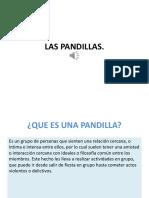 LAS PANDI.pptx