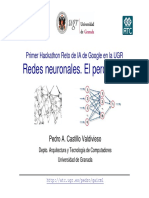 Red Neuronal Perceptron.pdf