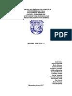 INFORME PRACTICA 3.3.docx
