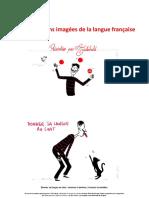 les expressions imagées de la langue francaise